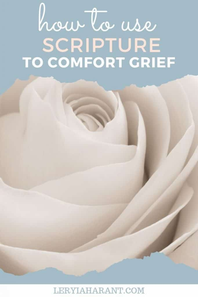 a white rose honoring grief